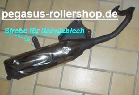 "Auspuff 25 km/h PEGASUS ROLLER ""SKY"" TGB"