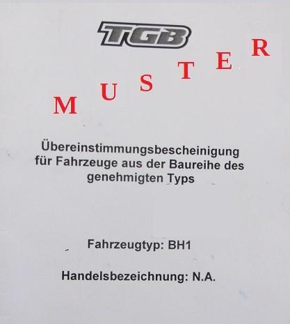 Ersatzbetriebserlaubnis TGB Papiere (Unwiderrufbar)